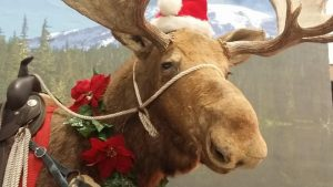 Holiday Food And Gift Festival  Billings Mt